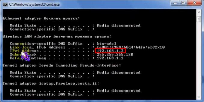 Копируем IP-адрес