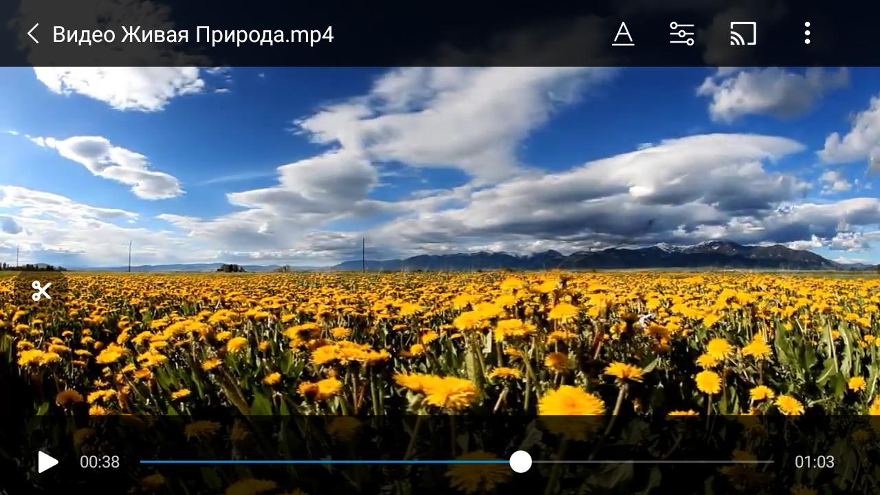 Создаем скриншот из видео