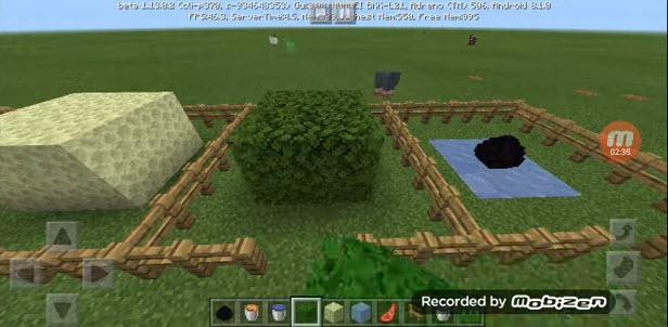 Выращивание лесного дракона