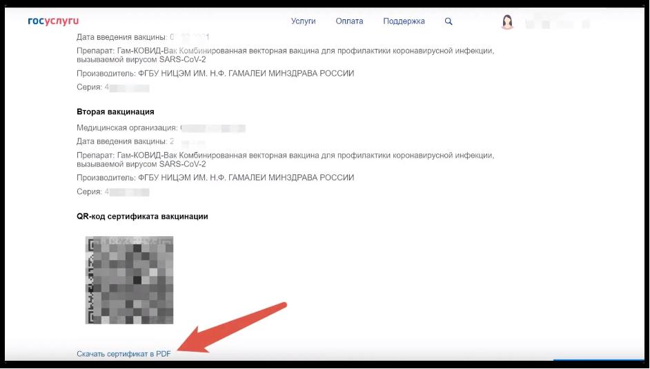 Кликаем «Скачать сертификат в PDF